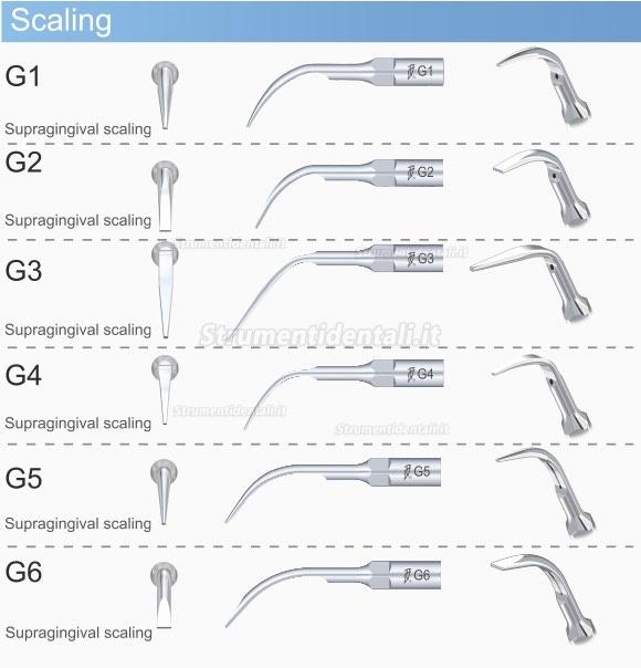 Woodpecker® G2 Piezo Inserti Compatibile EMS & UDS 10Pz